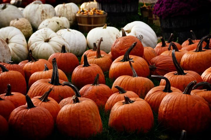 Нов октомврийски bucket list: какво не трябва да пропускаме да направим тозимесец?